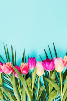 Flores de tulipán brillante en mesa azul
