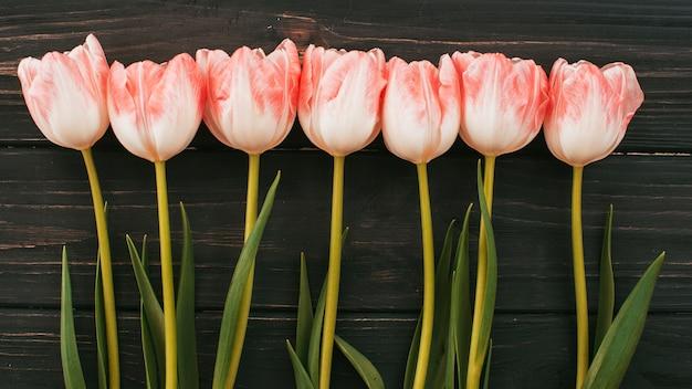 Flores de tulipán esparcidas sobre mesa de madera.