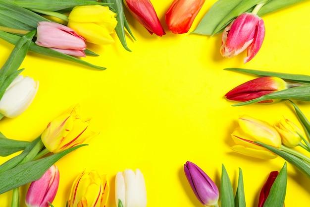 Flores de tulipanes de colores sobre fondo amarillo