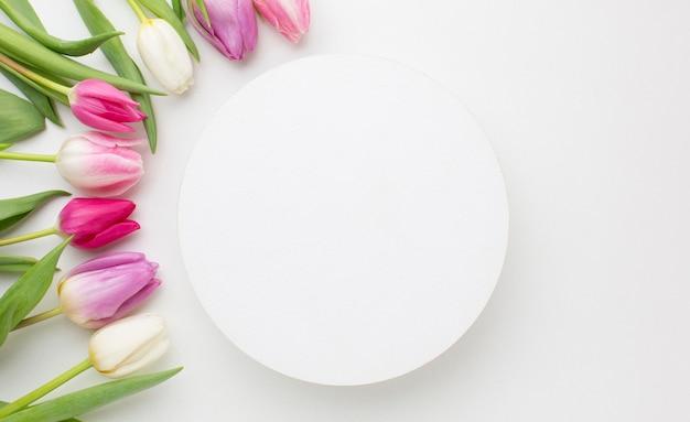 Flores de tulipanes vista superior