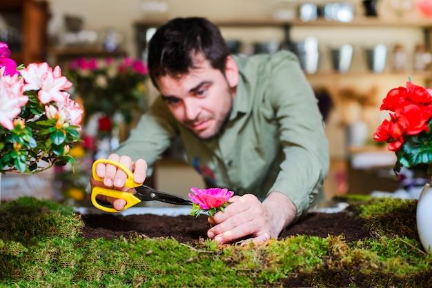 Florista masculino cortando una flor de un pequeño jardín cama interior