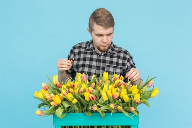 Floristería alegre guapo con caja de tulipanes sobre fondo azul.