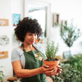 Floristería femenina afroamericana que sostiene la planta en conserva