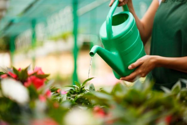 Floristería hermosa joven regando las flores.