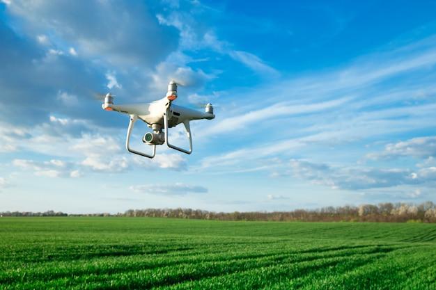 Flying drone sobre el campo de trigo Foto Premium