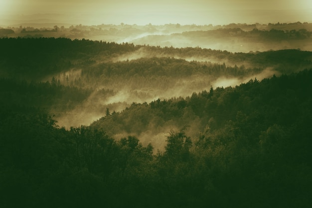 Foggy hills de polonia