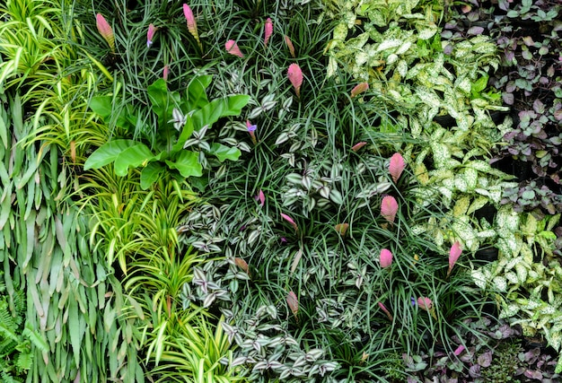 Follaje decorativo de pared de jardín vertical con hoja verde tropical.