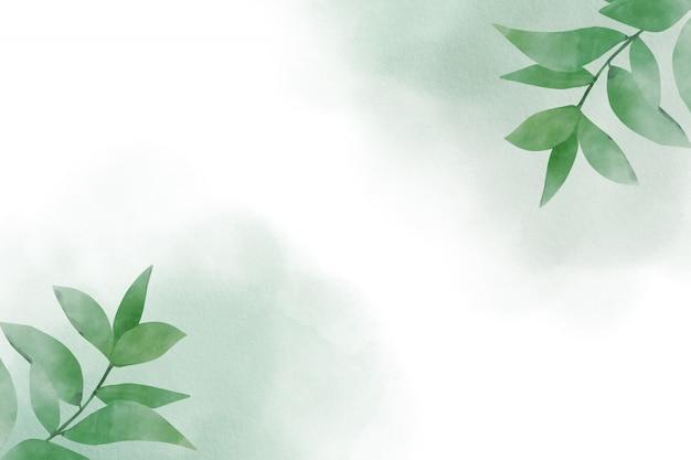 Fondo abstracto acuarela con hojas verdes