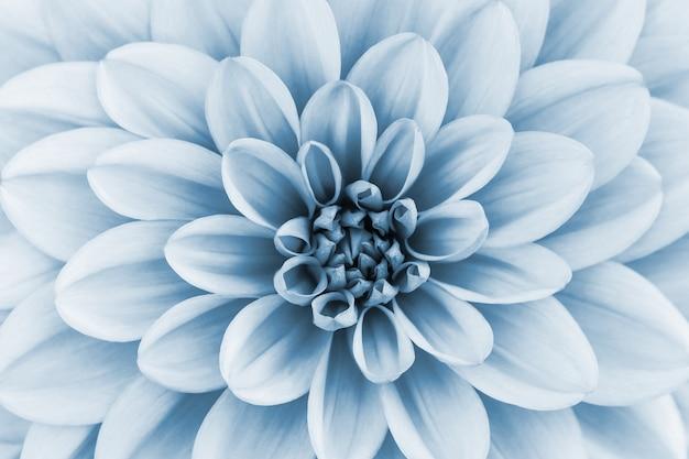 Fondo abstracto floral azul claro