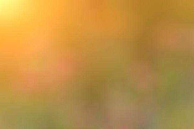 Fondo abstracto naranja