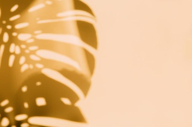 Fondo abstracto de sombras de hojas de palma en una pared amarilla