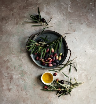Fondo de alimentos con rama de olivo, servilleta y plato, cuchillo y tenedor cubiertos, aceite de oliva en la pared de hormigón