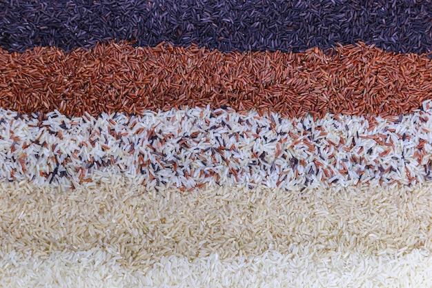 Fondo de alimentos con vista superior de cinco filas de arroz.
