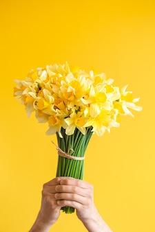 Fondo amarillo y manos masculinas con un ramo de narcisos amarillos. el concepto de saludos y día de la mujer.