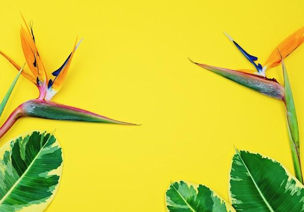 Fondo amarillo tropical brillante colorido con strelitzia