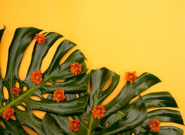 Fondo amarillo tropical
