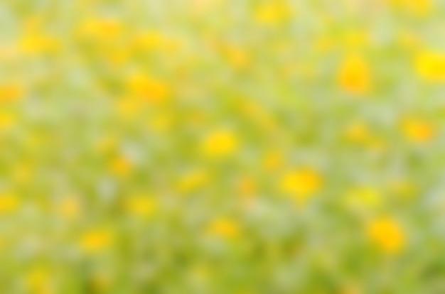 Fondo borroso abstracto de amarillo y verde
