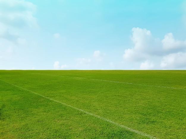 Fondo de campo de hierba verde y horizonte contra el azul cielo nublado