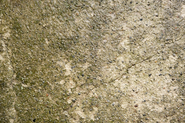 Fondo de cemento gris mojado