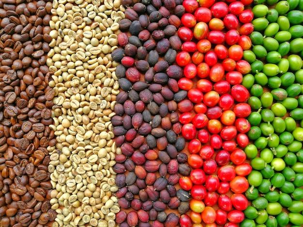 Fondo de círculo de grano de café