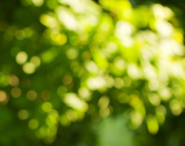 Fondo en colores verde y blanco.