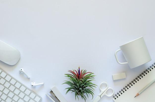 Fondo del concepto de espacio de trabajo con planta de aire tillandsia y material de oficina sobre fondo blanco.