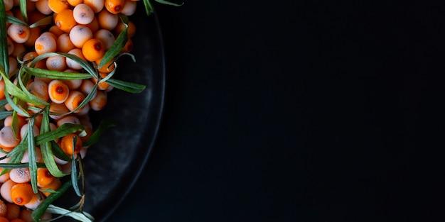 Fondo del concepto del otoño con la rama del espino cerval de mar.