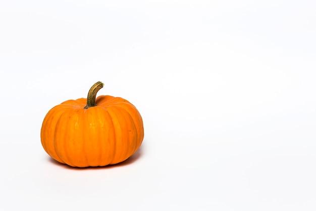 Fondo de la decoración de halloween. aislado
