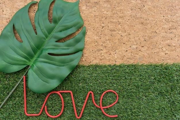 Fondo decorativo con hoja y palabra amor
