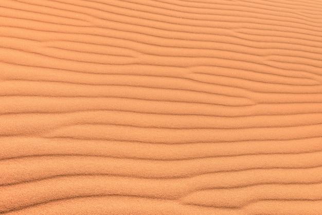 Fondo del desierto de arena con la ondulación del viento