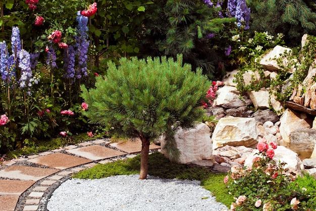 Fondo de diseño de jardines. paisajismo en parque con camino, árboles podados y césped