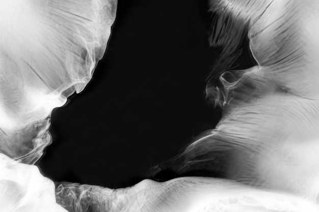 Fondo de escritorio abstracto de fondo de pantalla de humo blanco