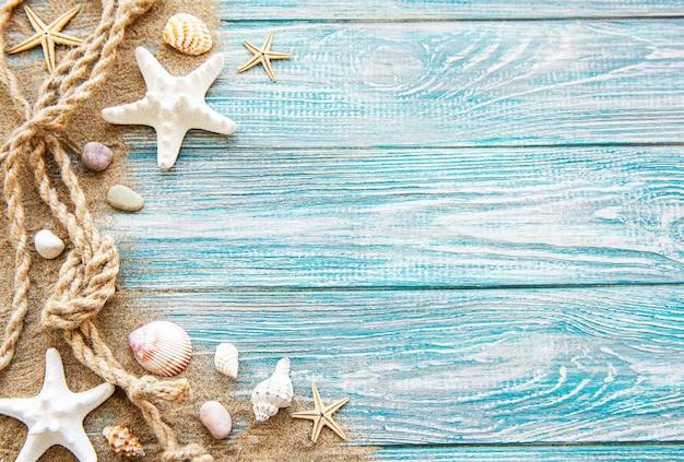Fondo de estrellas y conchas marinas