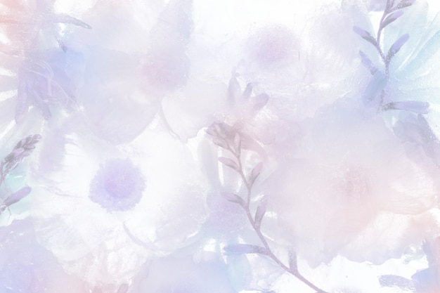 Fondo de flor de anémona en flor púrpura