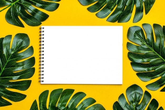 Fondo floral, hojas de árboles tropicales, monstera y palmera, verano, exótico, viaje, paradis.