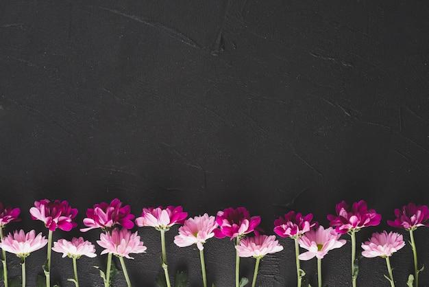 Fondo de flores con espacio