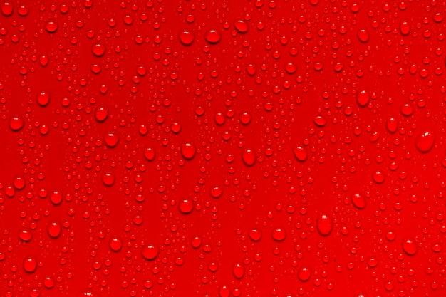 Fondo de gotas de agua roja
