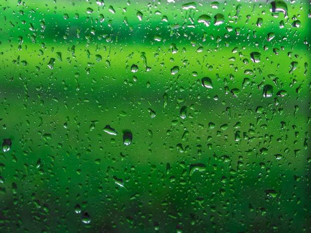 Fondo de gotas de lluvia. fondo verde