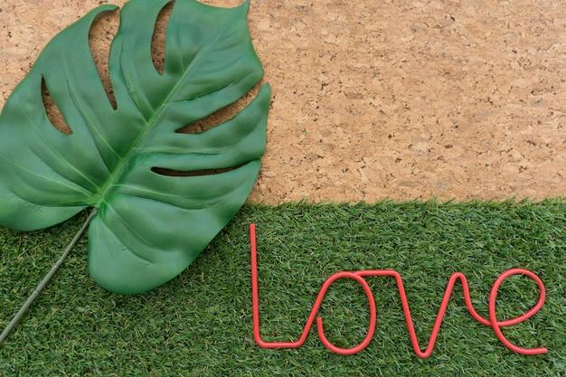 Fondo de hierba y corcho con hoja y palabra amor