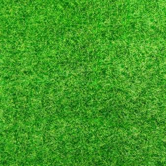 Fondo de hierba verde brillante