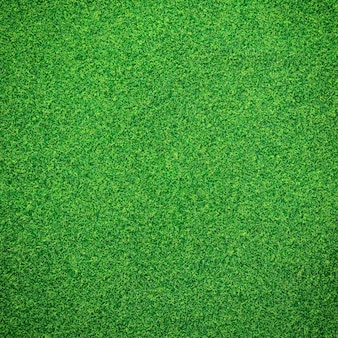 Fondo de hierba verde