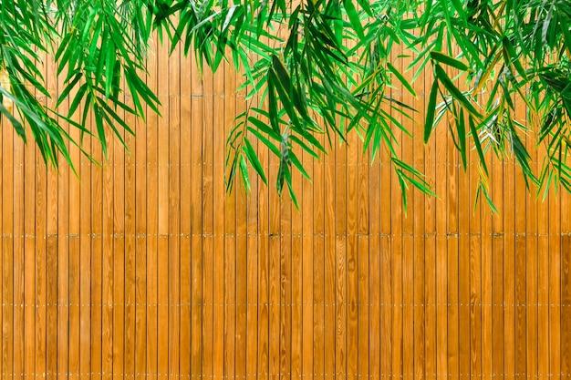 Fondo de hojas de bambú verde y placas de madera.