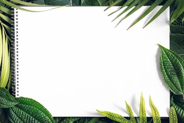 Fondo de hojas de mezcla tropical de verano con papel blanco en blanco, vista superior, espacio de copia