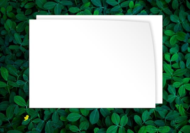 Fondo de hojas verdes en imagen de concepto de eco de luz oscura o refresco concepto de fondo
