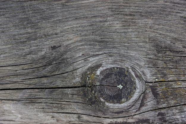 Fondo de madera. textura de madera natural. tablero rústico con espacio de copia.