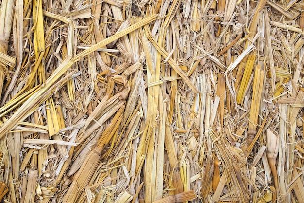 Fondo de madera de la textura de la naturaleza del serrín