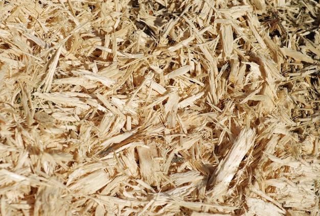 Fondo de material de textura de aserrín de madera closeup, vista superior