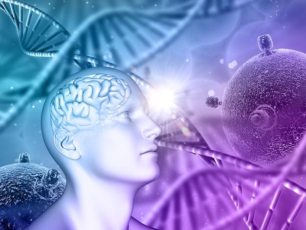 Fondo médico 3d con cabeza masculina, cerebro, hebras de adn y células de virus