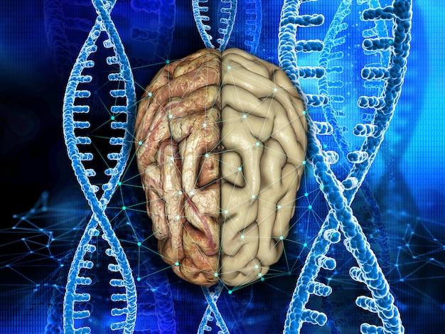Fondo médico en 3d con un cerebro sano y poco saludable en hebras de adn