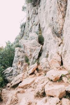 Fondo de montaña